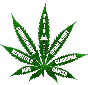 medical-marijuana-pain-relief
